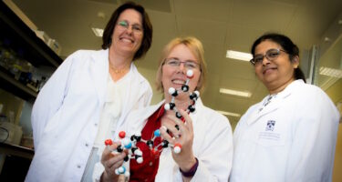 The research team – Charlene Kahler, Alice Vrielink and Anandhi Anandan . Credit: Rhys Woolf, UWA Media Office