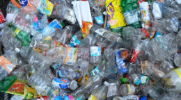 Green chemistry and its plastic-munching mission